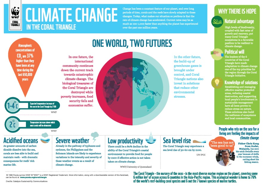 climate change infographics 1